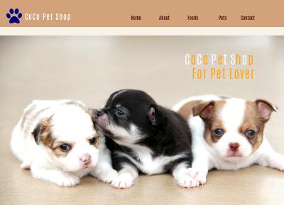 CoCo Pet Shop
